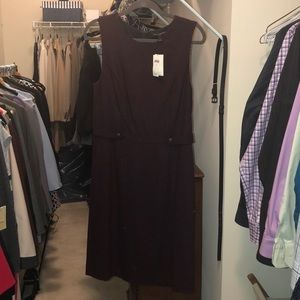 NWT Banana Republic burgundy dress